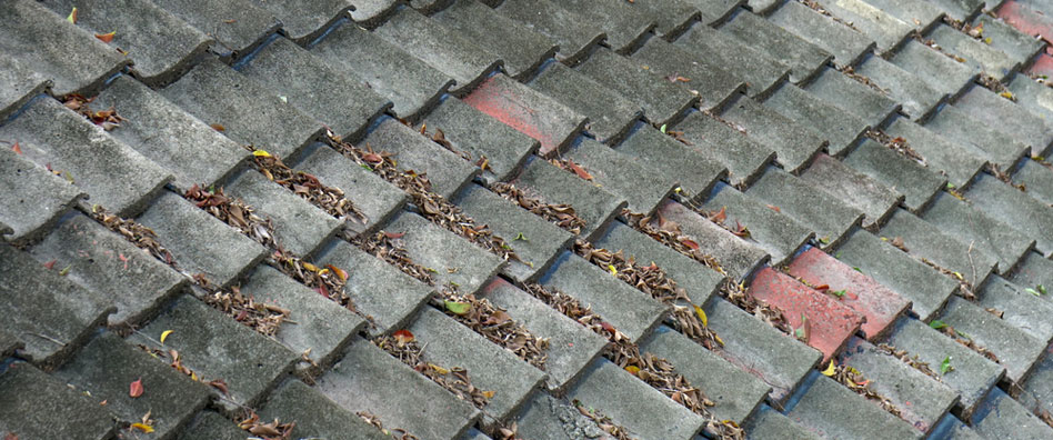Roof Drain Repair in West End, California